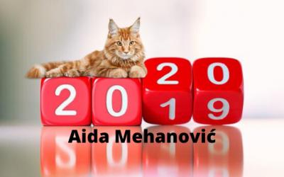 Aida Mehanović – Šta očekujete u 2020.godini?