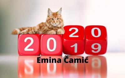 Emina Čamić – Šta očekujete u 2020. godini?