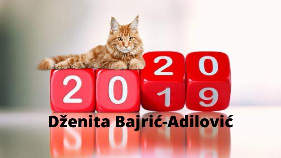 Dženita Bajrić-Adilović – ŠTA OČEKUJETE U 2020. GODINI?
