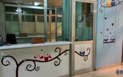 Osvrt na slikarski rad ručno oslikanih murala umjetnice Zehrine na zidovima Pedijatrijske klinike UKC-a Tuzla