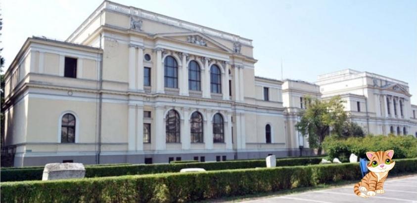"""Poziv školama za prijavu na festival muzejske pedagogije """"Noć u muzeju"""""""