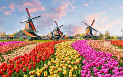 Zaviri u virtualni svijet: Prošetajte najljepšim vrtom na svijetu
