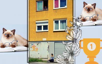 Adi Smajić: Stigla je opet pod moj prozor … – Nova realnost izazvana COVID-19