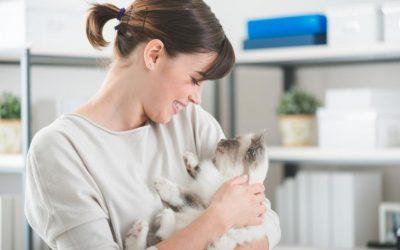 Voli li me moja mačka? 10 znakova koji to dokazuju