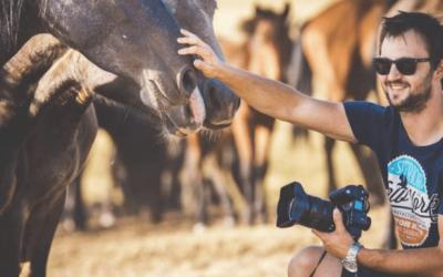 Divlji konji najveći adut: Mladi fotograf iz Livna svu svoju ljubav posvetio promociji rodnog kraja